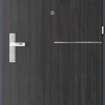 Uşi tehnice şi metalice Insertii 8
