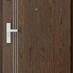 Uşi tehnice şi metalice Insertii 3