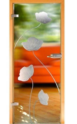 Uşi de sticlă Model SM5